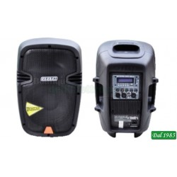 BOX AUDIO PROFESSIONALE POTENZA MAX 240W CON USB/SD